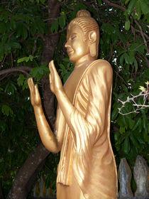 stehender Buddha mit erhobenen Händen by pictaria