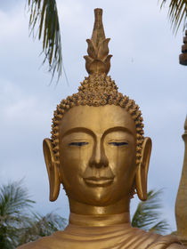 Laos-2012-dot-best-of-1090943