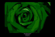 June Rose Green von Jeff Pierson