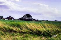 Seven Mile Barn by Jeff Pierson
