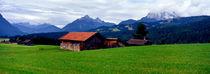 buckelwiesen-panorama; deutschland, bayern, region mittenwald von helmut-krauss-panorama