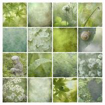 Grüne Stille  von Ursula Pechloff