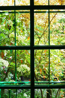 Window 7, Claude Monet's Garden in Giverny, France von Katia Boitsova-Hošek