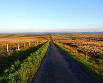 Road leading from Pigeon Top von John McCoubrey
