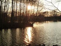 Sonnenuntergang am See von Silke Bicker