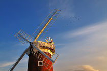 Horsey Windpump, Norfolk by Louise Heusinkveld