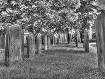 All Saints' Church Grave Yard Rufforth von Allan Briggs