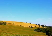 Wiesen und Felder von Wolfgang Dufner