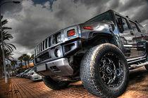 der Hummer by Gipmans Photography