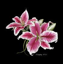 Stargazer Lillies von Karla White