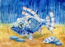 Fish158