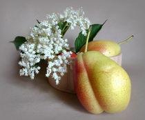 Holunderblüte mit Birnen by Kerstin Runge