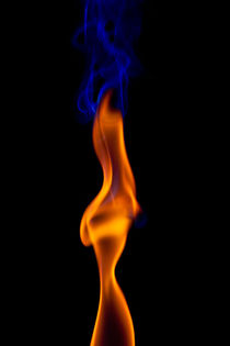 Fire Lady by Gert Lavsen