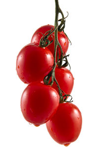 Five hanging tomatoes by Gert Lavsen