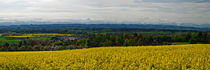 Oberschwaben - Panorama von Horst Hoch