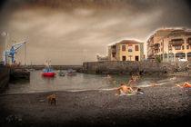 El Puerto deL Puerto de la Cruz von Gipmans Photography