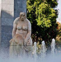 Parque-Garcia Sanabria von Gipmans Photography