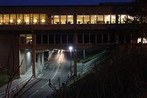 Campus009