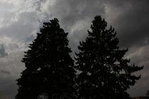 Storms VII von Beth Billian (Azraeya)