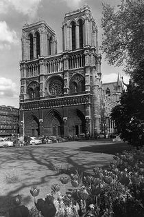 BW France Paris Notre Dame Cathedral 1970s by blackwhitephotos