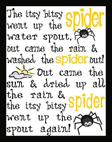 Spider-highres