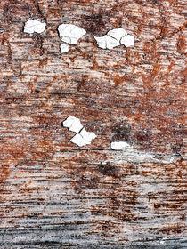 Weiße Inseln auf altem Holz by reinhold möller