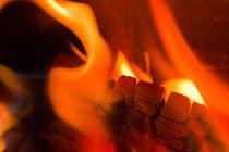 Feuer und Flamme by lightart