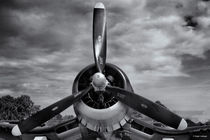 'F4U Corsair Propeller' by Roger Wedegis
