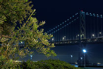 Bush & Bay Bridge von Tanel Teemusk