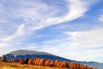 Beautiful autumn landscape von Admir Idrizi