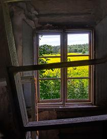 Abandoned view by Kristiina  Hillerström