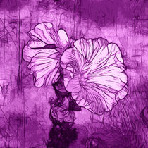 Wild Magenta by Kathleen Stephens
