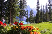 Idyllischer Bergsee Morain Lake in Kanada, Alberta von mellieha