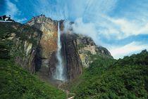 Angel Falls by Raul Sojo