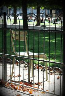 Luxembourg garden chair 1 by Katia Boitsova-Hošek
