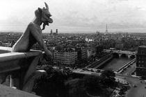 BW France Paris Notre Dame Cathedral the devil 1970s by blackwhitephotos
