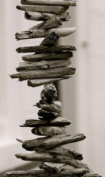 bastoncillo  by © Ivonne Wentzler