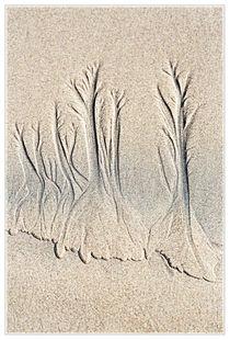 Strandwald II von Dirk Noelle