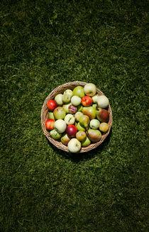 A Fruit Basket on the Grass von olgasart