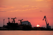 Danubian sunrise by Maria Livia Chiorean