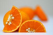 Orangen ganz frisch by Daniela  Skrzypczak
