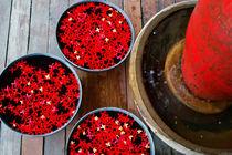 Tiny reds by Kristiina  Hillerström