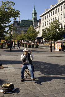 OLD MONTREAL HARMONICA PLAYER by John Mitchell