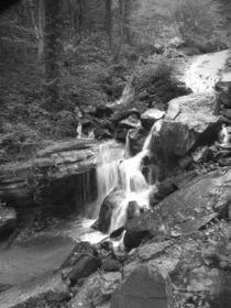 Climbing The Falls von © CK Caldwell