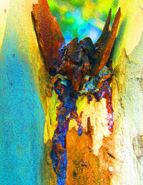 Summer Eucalypt Abstract 2 von Margaret Saheed