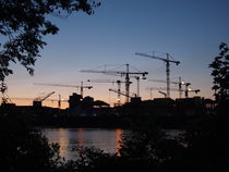 Swarm of Cranes von Bjoern Buxbaum-Conradi