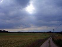Field Road by Bjoern Buxbaum-Conradi