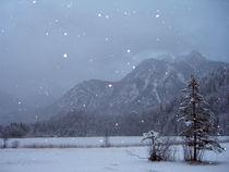Lake Schwansee in Winter by Bjoern Buxbaum-Conradi