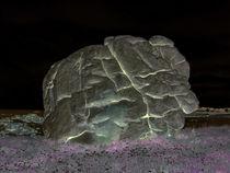Brain Rock von Bjoern Buxbaum-Conradi