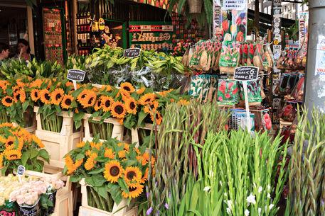 Amsterdam-flower-shop0013